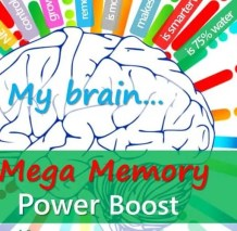 The Fun Fact Sheet, Mega memory Power Boost for Brilliant Kids #funfactsheet #kidslearning #learningsstyles