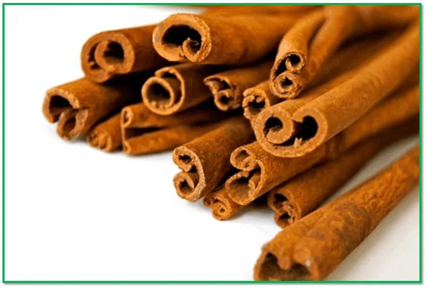 cinnamon brain food for studying