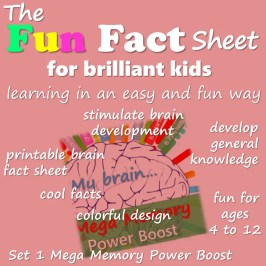 fun fact sheet for brilliant kids. top learning styles. Fun and easy learning with HealthyFamilyandMe.com