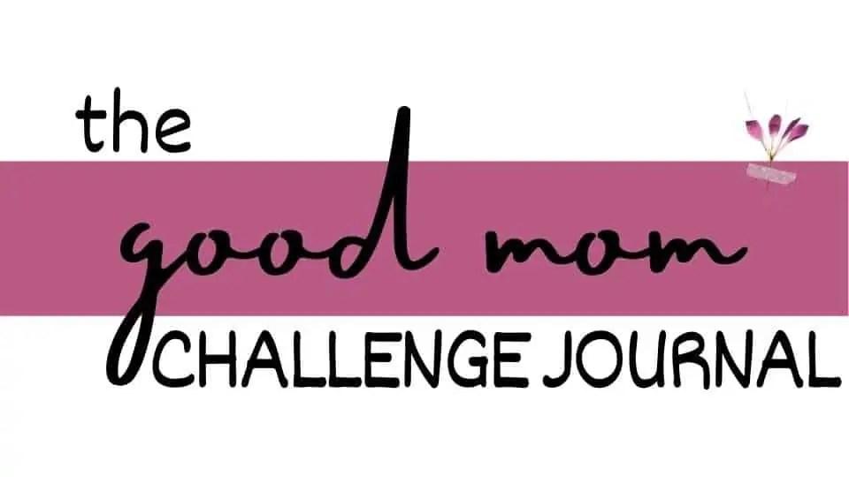 good mom challenge journal