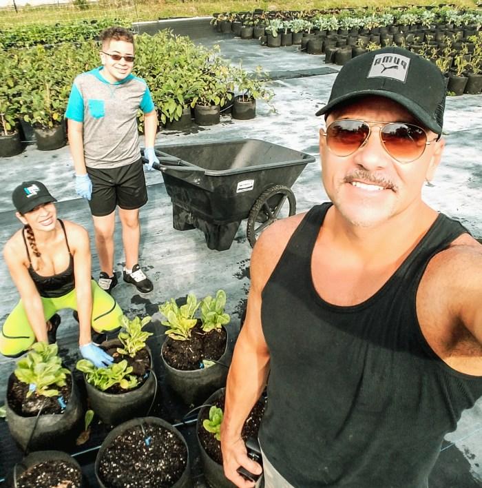 urban gardening, integrative nutrition, volunteer, the patch garden