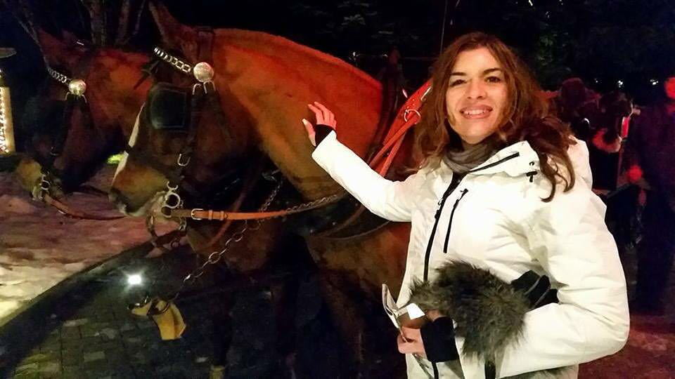 horse carriage grindelwald, switzerland