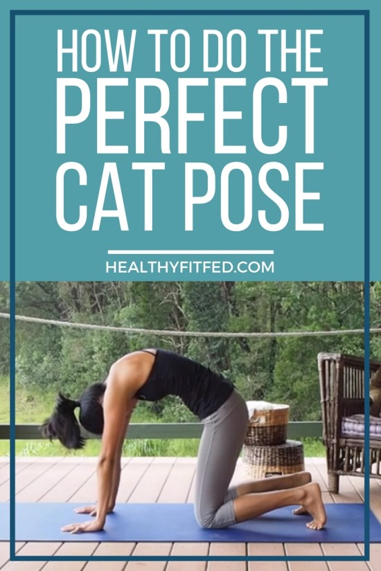 How to do the perfect cat pose. A video tutorial with step by step instructions.