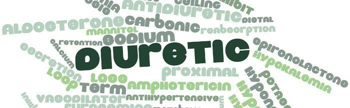 ravensara diuretic properties