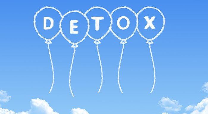 chaga for liver detox
