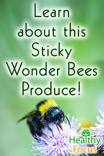 mig-learn-about-this-sticky-wonder-bees-produce
