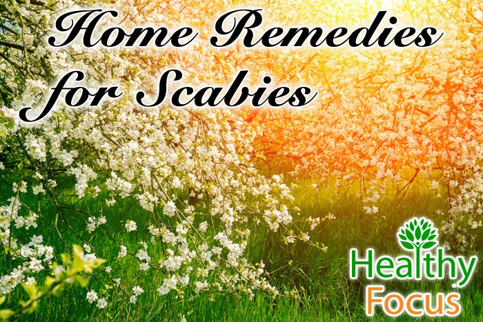 hdr-Home-Remedies-for-Scabies
