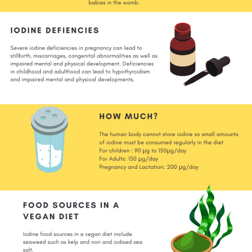 iodine in a vegan diet