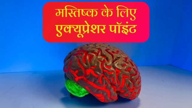 brain acupressure points in hindi