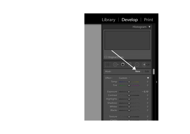 Lightroom editing Brush Tool  |Lucia Marecak