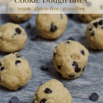 4 Ingredient Chocolate Chip Cookie Dough Bites [vegan + gluten-free]