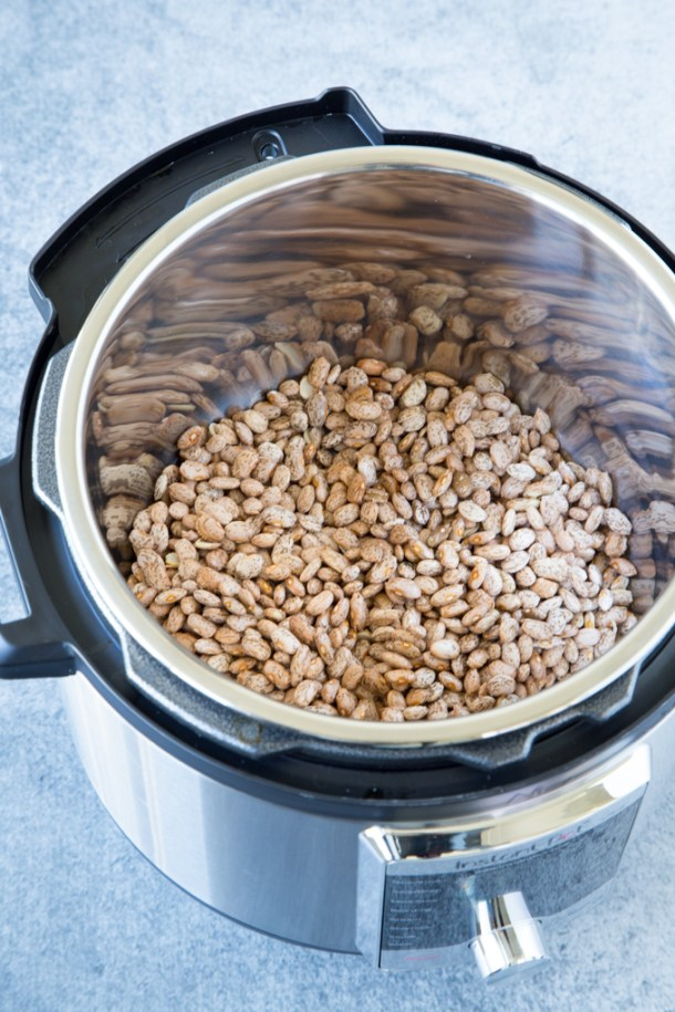 dry Pinto beans in the bottom of an Instant Pot ready to be cooked