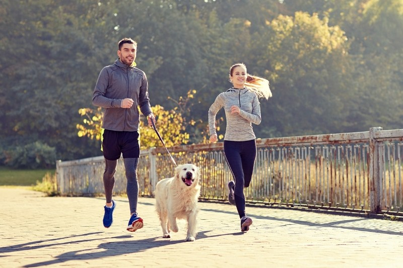 Top Eight Health Benefits Of Having A Dog
