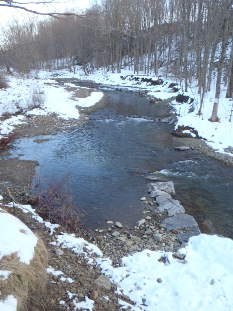 Clear creek in New York after restoration is lined with rocky habitat for fish.