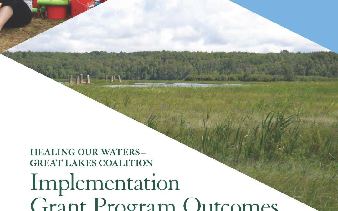 Implementation Grant Program Outcomes and Successes