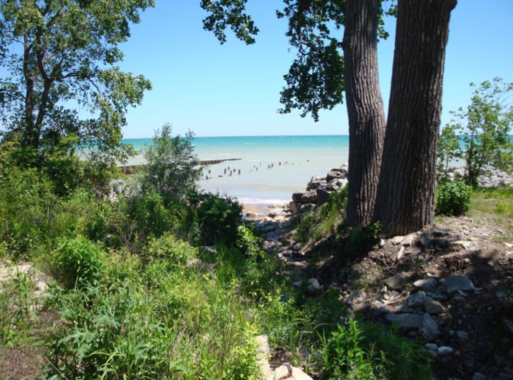 A view of Lake Michigan through the trees in a ravine.