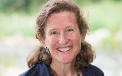 Great Lakes Coalition Names Laura Rubin as Next Director