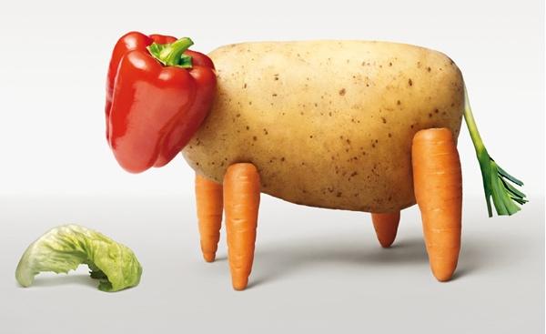 Je suis dans une case : Végétalienne ? Végétarienne ? Vegan ?