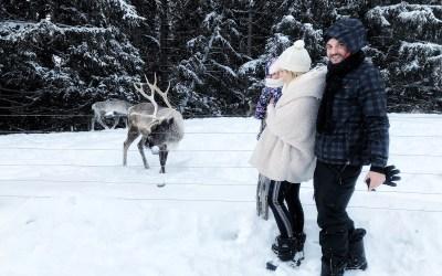 Activités à faire quand on part à la neige (+ adresses)