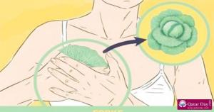 Relieve Pain and Breast Swelling With Cabbage Leaves