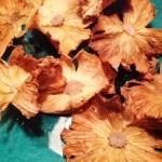 Dried pineapple recipe