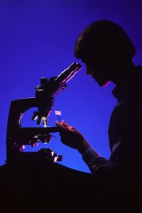 17077-silhouette-of-a-woman-using-a-microscope-pv