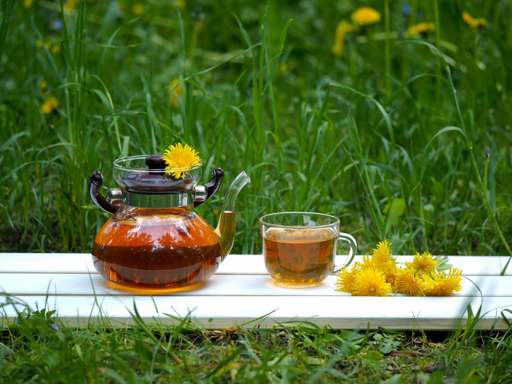 Can dandelion root tea cure cancer?