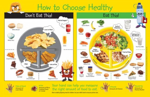 pictures-of-healthy-food-plate-700x456