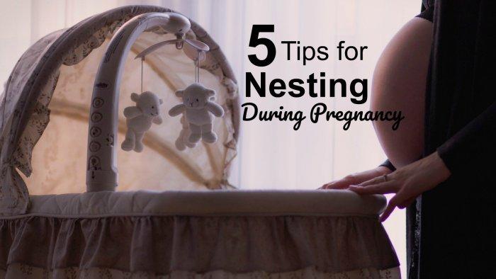 pregnancy nesting