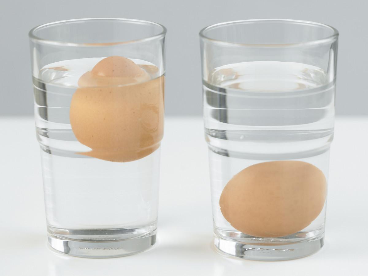 6 Egg Experiments