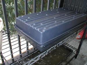 WheatGrass-Growing-Tray-with-Vented-Cover