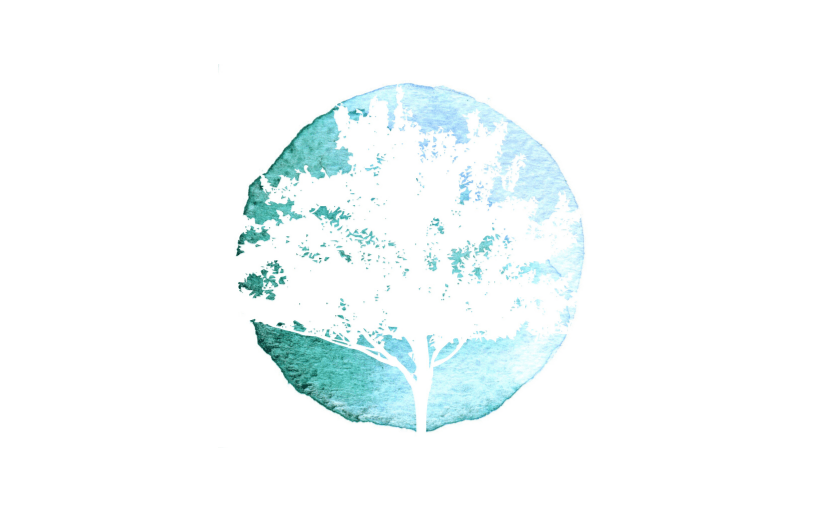 The Tree: A Symbol of Consistency, Adaptability & Growth