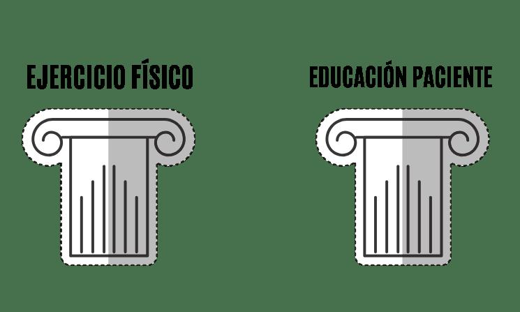 ejercicio físico y educación