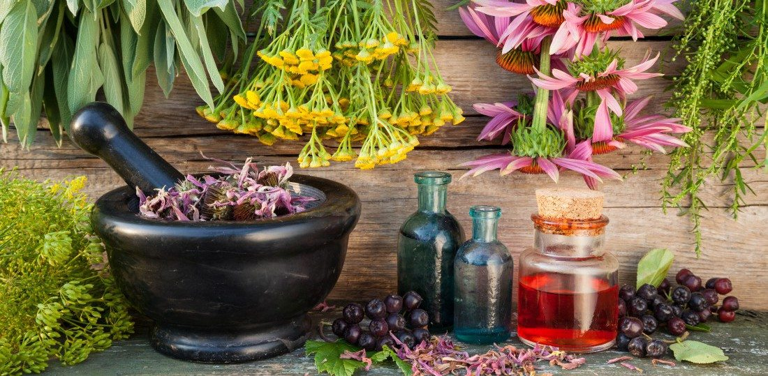 Herbs for Health and Healing – In your Cupboard