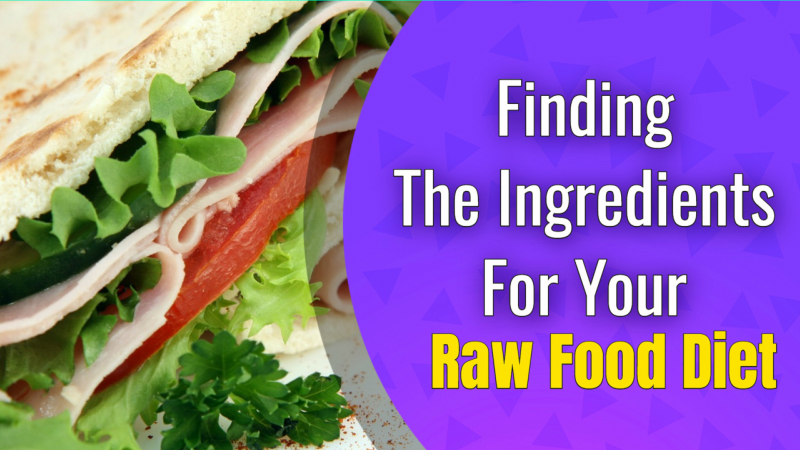 Finding The Ingredients For Your Raw Food Diet