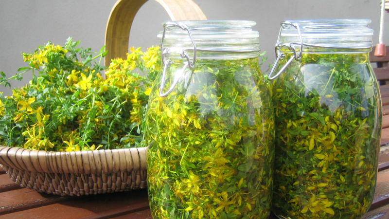 What is Infused Herbal Oil?