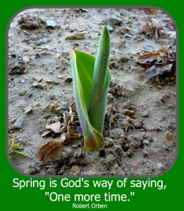 spring - healthy spirituality.org