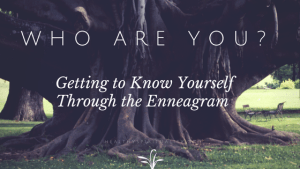 Who are You? Getting to Know Yourself Through the Enneagram