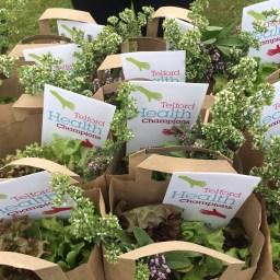 Produce with HC leaflets
