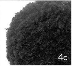 Type 4C Kinky Hair