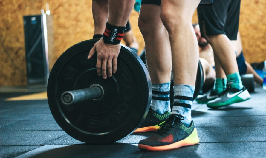 The Best Body Beast Legs Review – Ultimate Guide