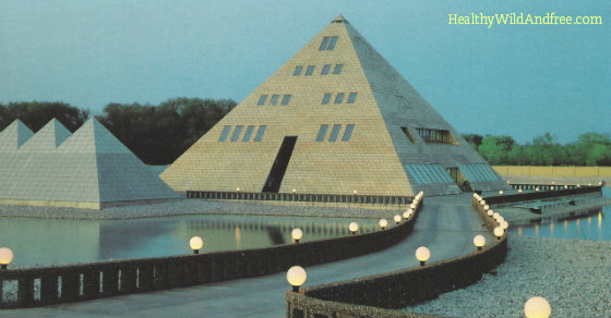 This Man Built A Gold Pyramid Home in Illinois and You Won't Believe What Happend Next  Goldpyramidillinois