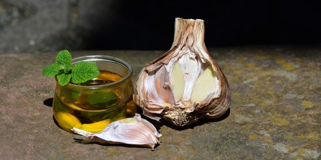 garlic oil benefits for hair, skin and health