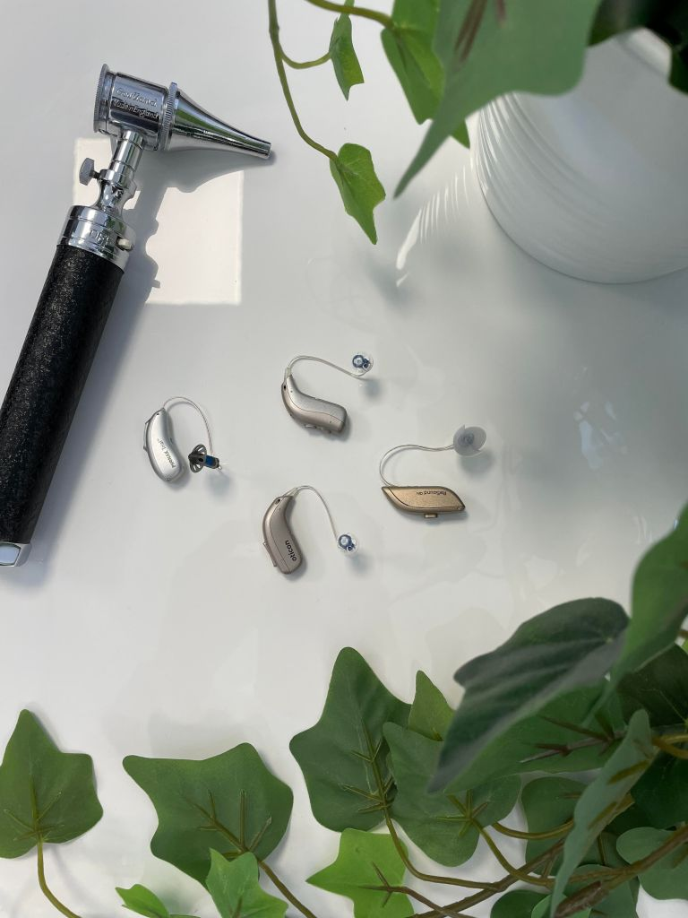 Hearing Beyond Audiology and Hearing Clinic Top Hearing Aids Audiologists