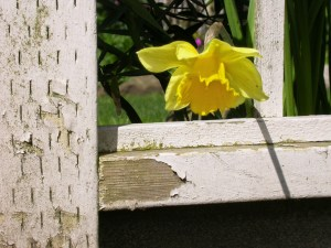 How to Live Easter's Hope in Friday's Pain