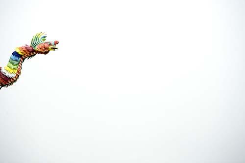 Alishan, Taiwan: kite, photo by Jake Warga