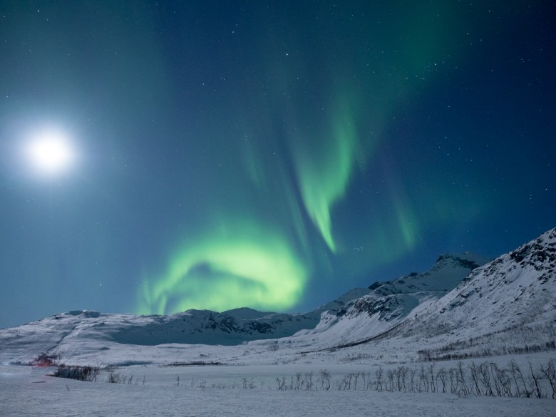 2. Northern Lights on Kvaløya.jpg