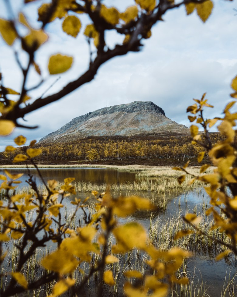 Spectacular explosion of colours during Autumn in Lapland
