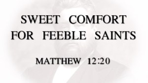 sweet_comfort_feeble_saints_postart