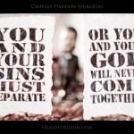1217 Sins Separate Bobble -Spurgeon Picture Quote